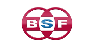 Bsf West Michigan Automation Engineering